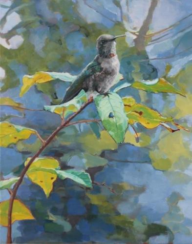 Hummingbird Surveying III