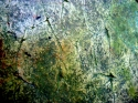The ways of a blackbird (detail) (thumbnail)