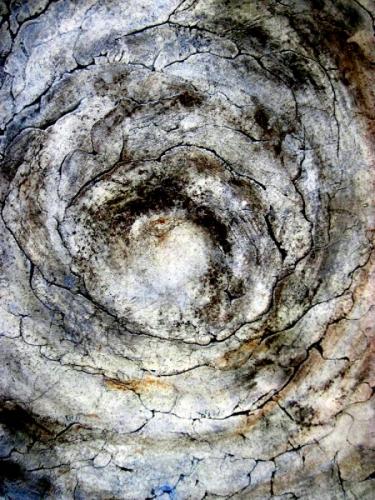 """""""Circle life Life"""" detail (large view)"""