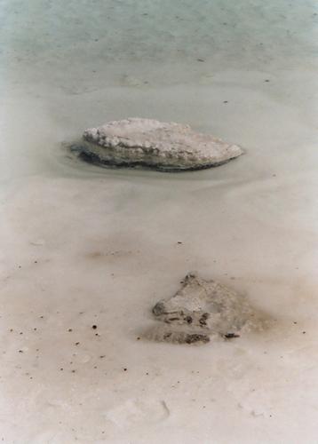 Salt lake III