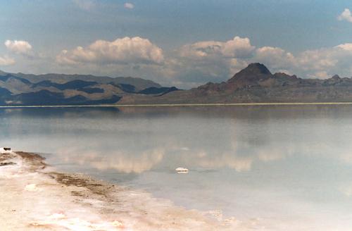 Salt Lake V