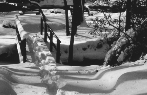Snow Covered Foot Bridge