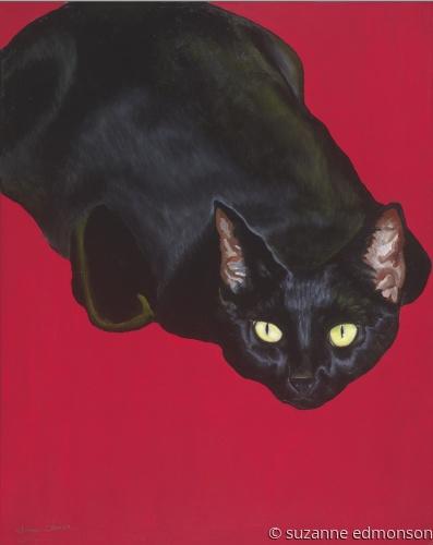 CatCow