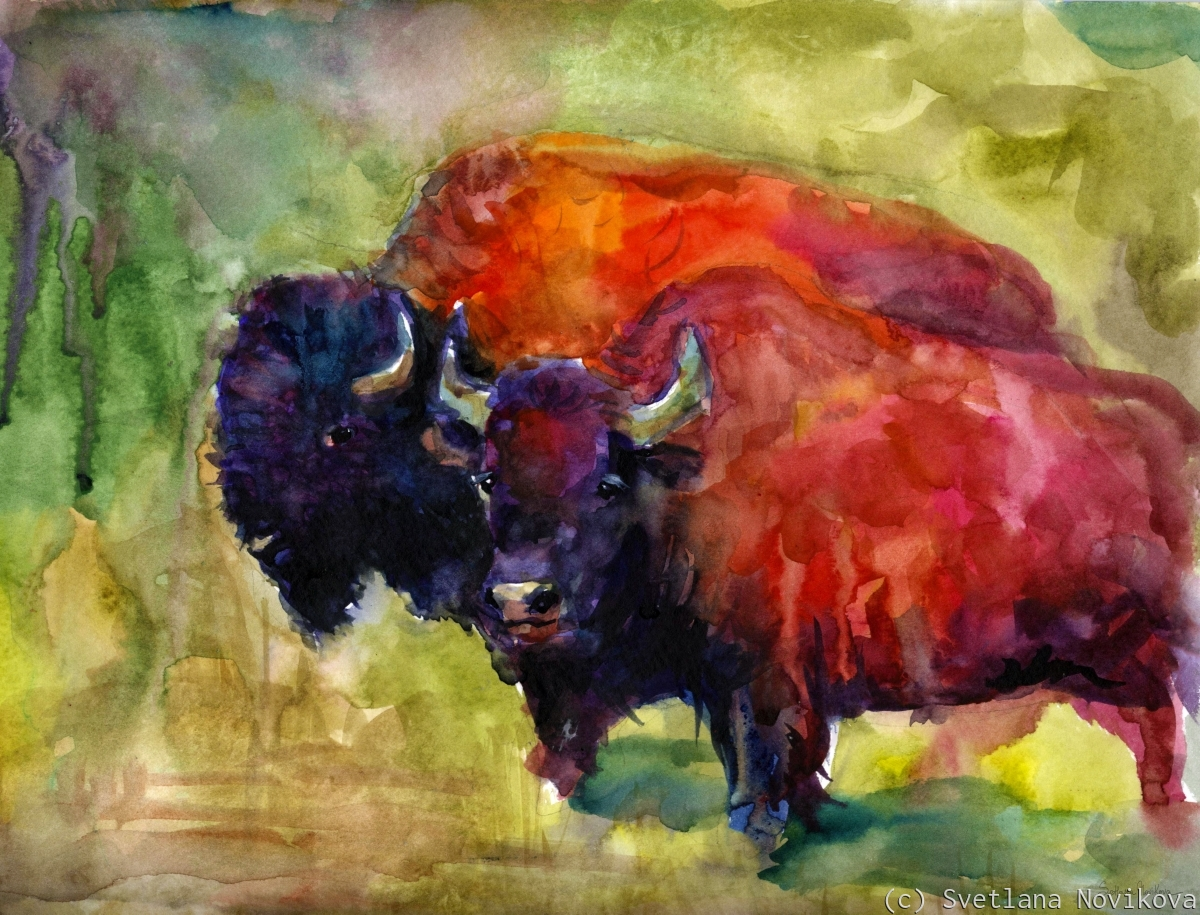 Two Buffalos original watercolor painting (large view)