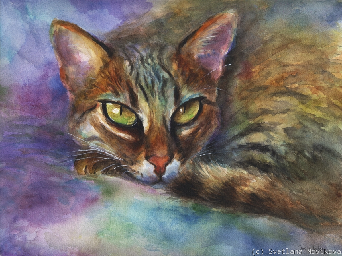 Exotic Bengal Brown Cat watercolor painting art (large view)