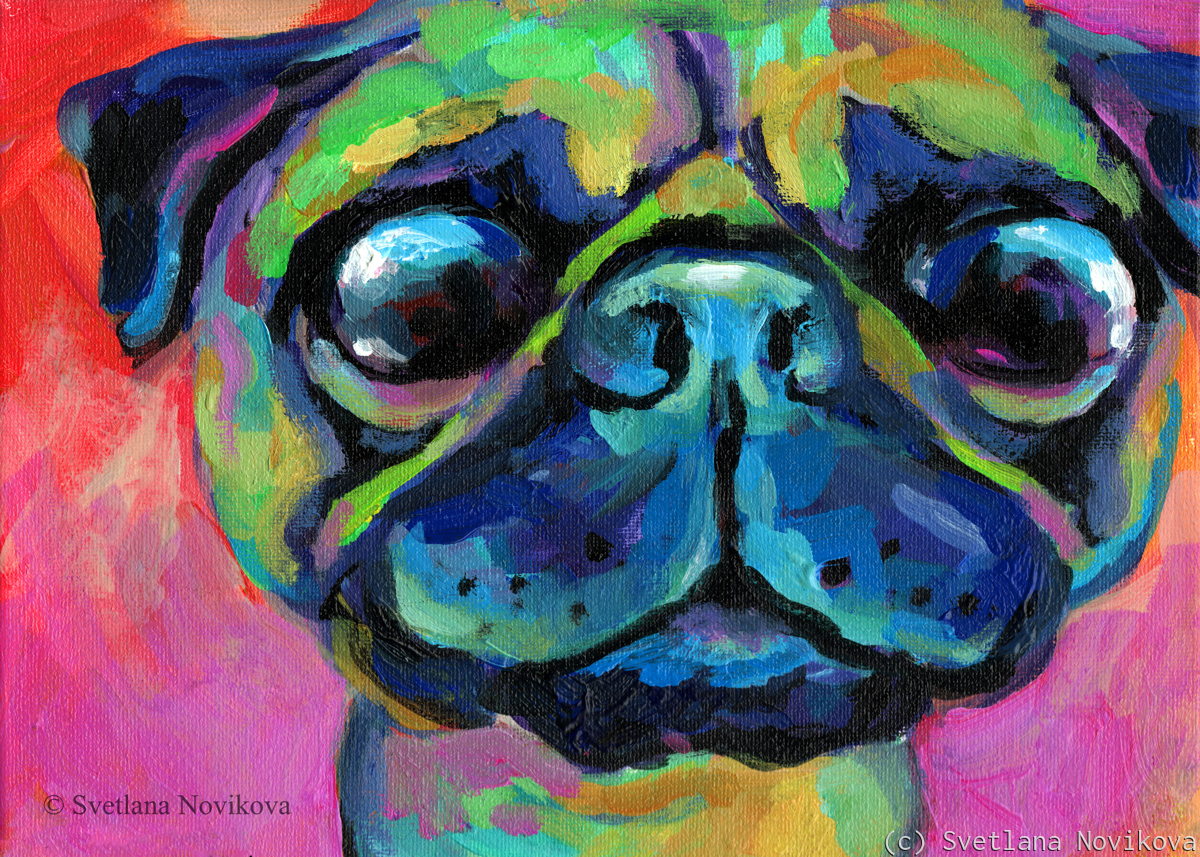 Funny Pug colorful painting (large view)