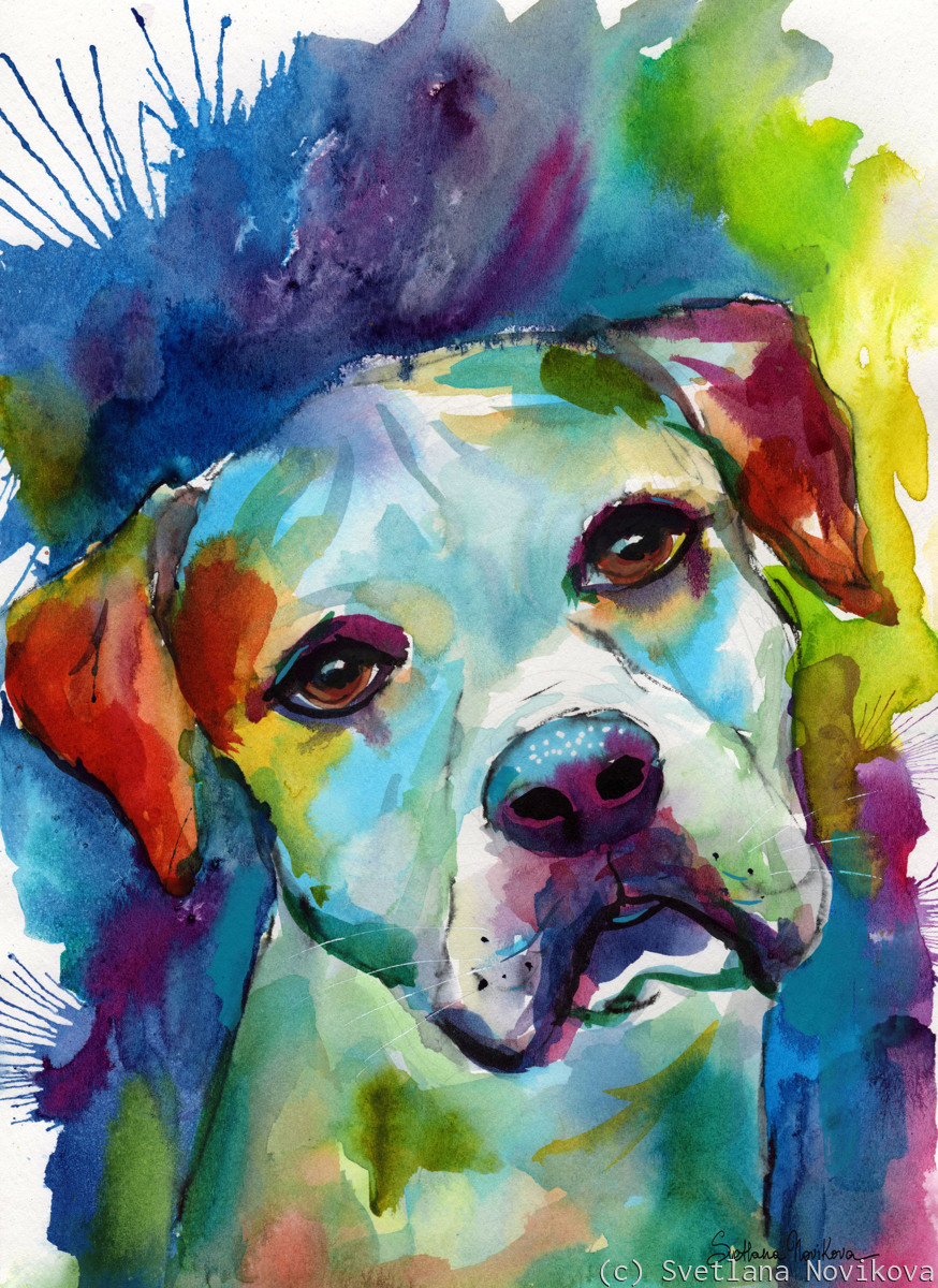 American Bulldog dog painting watercolor (large view)