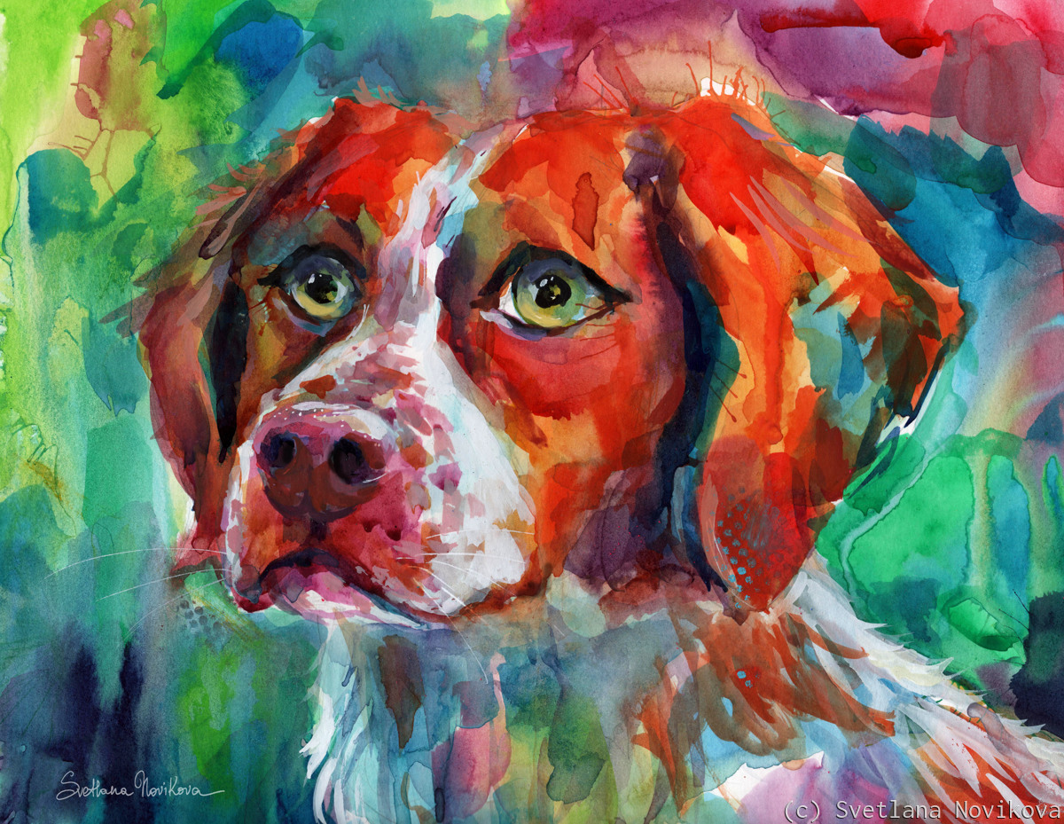 Colorful Brittany Spaniel watercolor painting dog (large view)