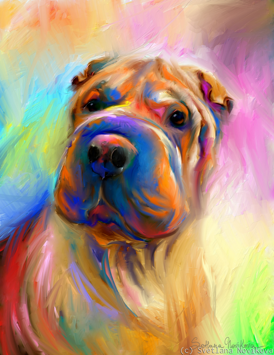 Chinese Shar Pei (large view)