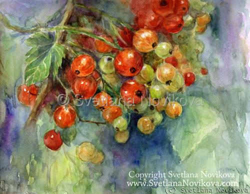 Currants berries Watercolor Painting Svetlana Novikova (large view)