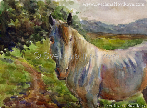 Original Watercolor Horse painting Svetlana Novikova (large view)