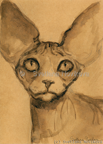 Sphynx cat #46 ink painting Svetlana Novikova (large view)