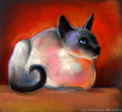 siamese cat 8 (large view)