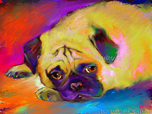 Pug #3 Giclee print (large view)