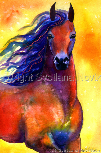 Arabian Horse #1  (large view)