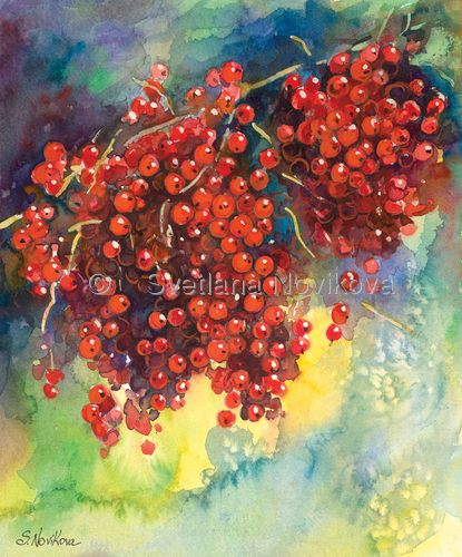 currants berries watercolor painting  (large view)