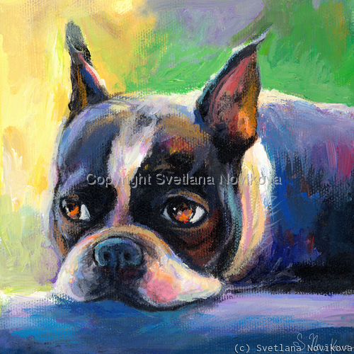 Pensive Boston terrier #2 painting Giclee Print (large view)
