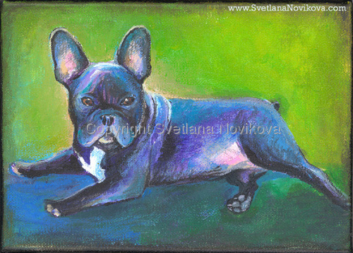 French Bulldog # 4 (large view)