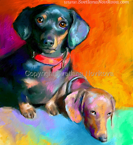 Dachshund dogs #1 (large view)
