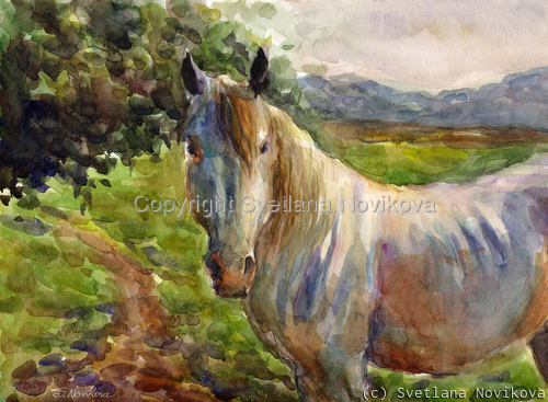 Original Watercolor Horse Painting (large view)