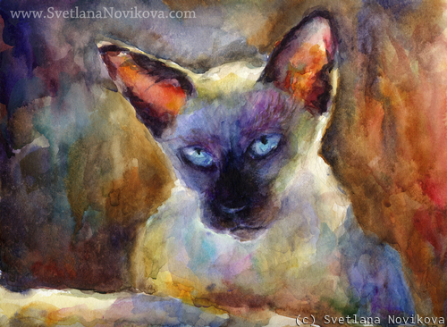 Siamese cat painting Watercolor Novikova (large view)