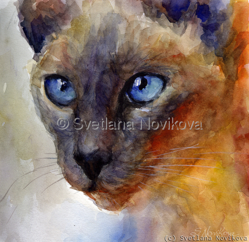 Siamese Cat Watercolor painting Novikova (large view)