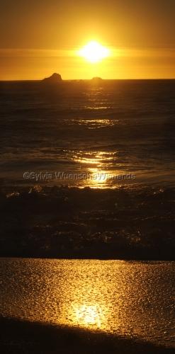 Golden Ocean 2