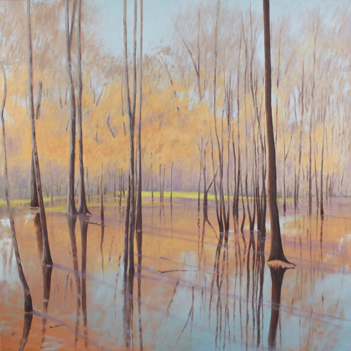 December Wetland (large view)