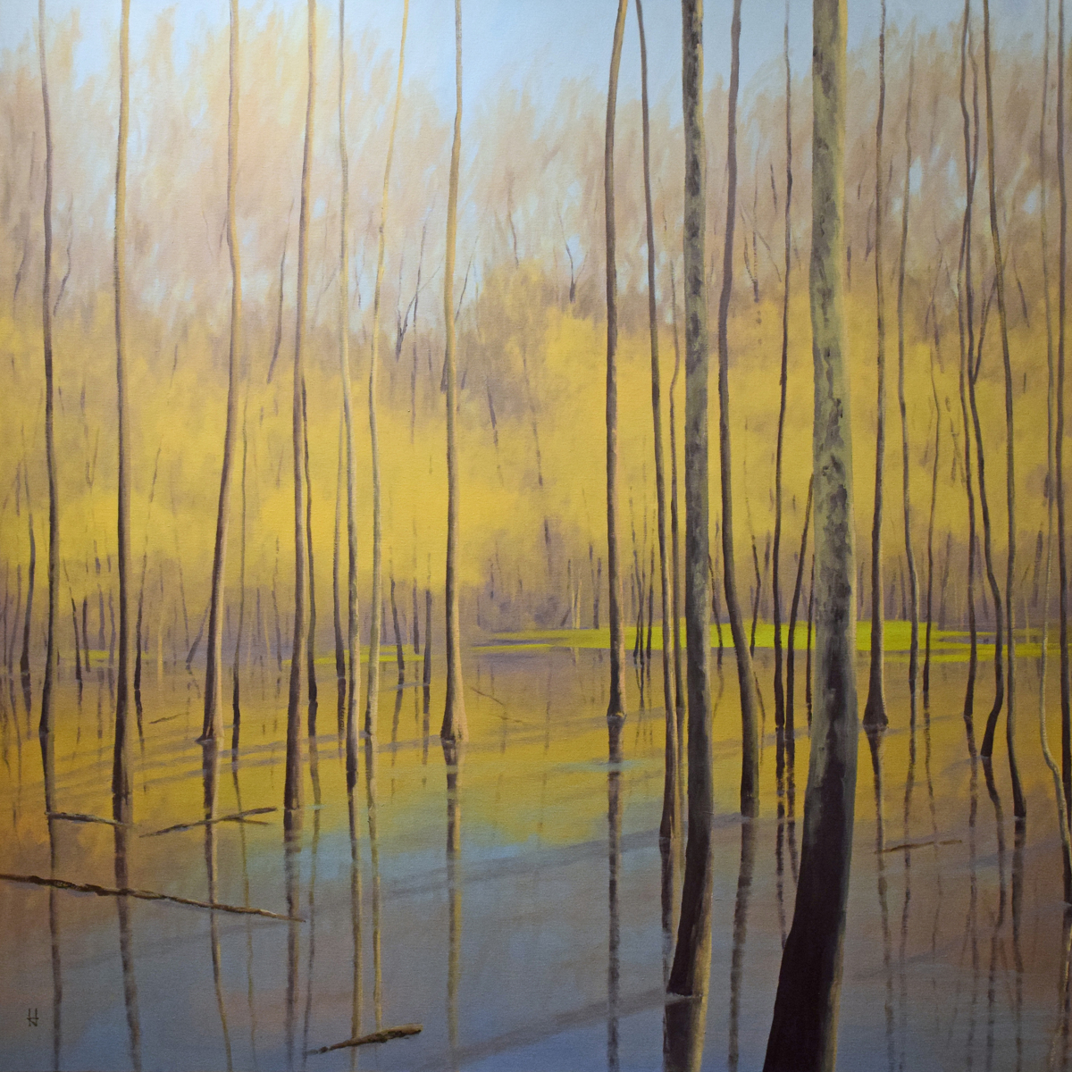 Wetland in Gold (large view)