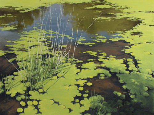Spring Pond by Harold Joiner