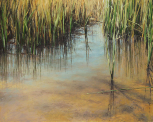 Serene Shallow Water by Harold Joiner