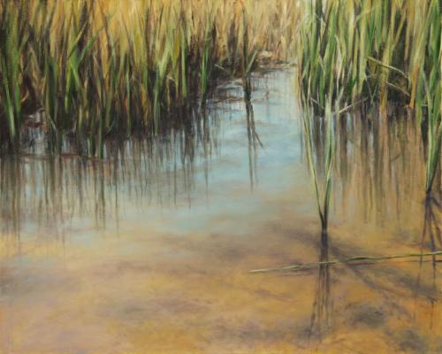 Serene Shallow Water