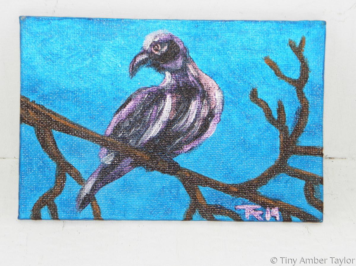 Black Dove (large view)