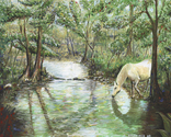 Natural wildlife on horse drinking ffrom a streem in a very green Tenneessee. (thumbnail)