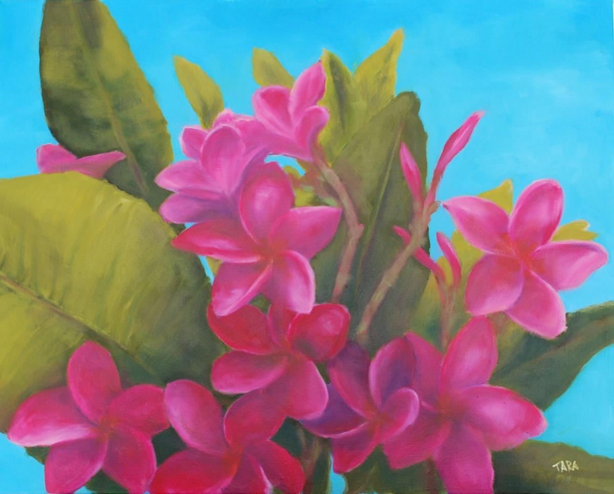 Frangipani, deep pink (large view)