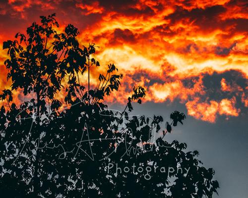 Skies on fire