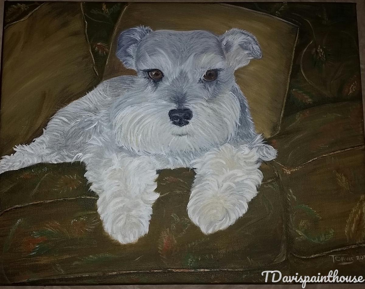 "Pet Memorial Painting, Acrylic Portrait of Max Miniature Schnauzer, 11"" x 14"" canvas (large view)"