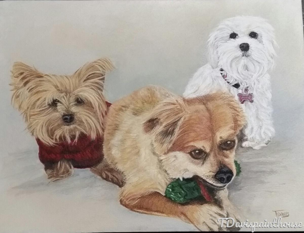 Custom Multi Pet Portrait, Custom Dog Painting, Acrylic Animal Memory Painting on Canvas, Free Shipping  (large view)