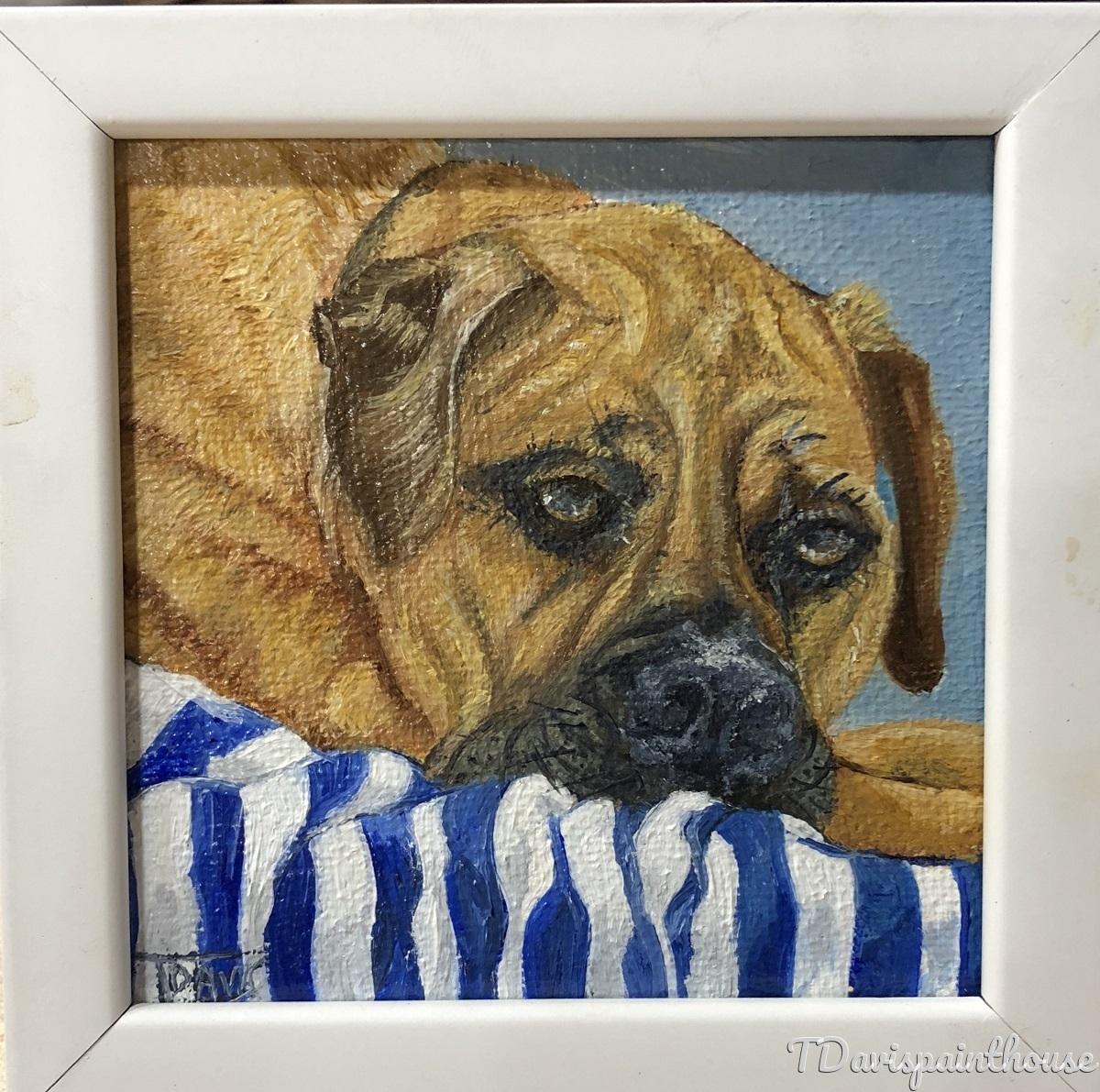 "Bull Mastiff Painting, Mini Canvas 3"" x 3"", Memorial Pet Portrait, Animal Painting, Free Shipping (large view)"