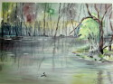 muldoons pond (thumbnail)