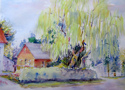 willow behind the Chalfont (thumbnail)