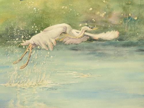 Flyaway - Great Blue Heron