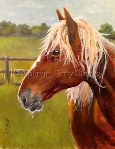 Horse Portrait Commission by Art by Terry Howell Stanley