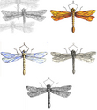 dragonflies (thumbnail)
