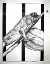 Ink Fly (thumbnail)