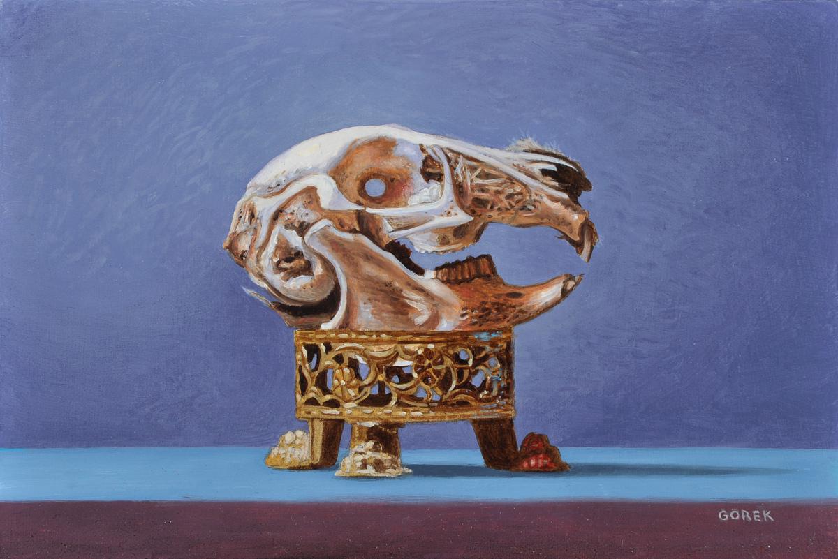 Rabbit Skull (large view)