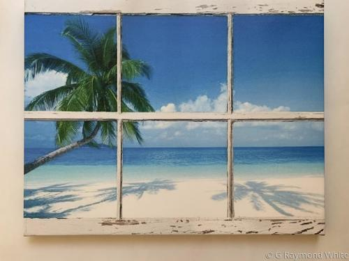 Window to the Shore