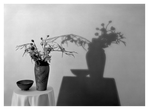 Vase, Bowl and Shadow