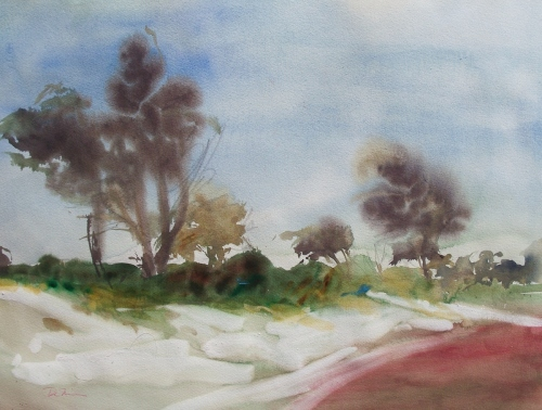 Storm-front, Reeds Beach