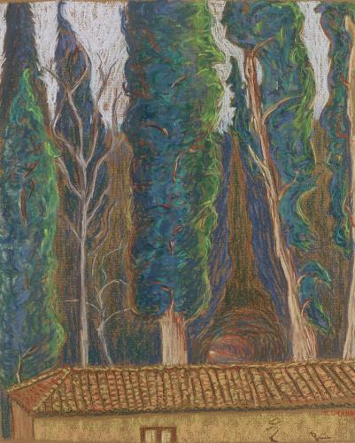 Trees at Alhambra